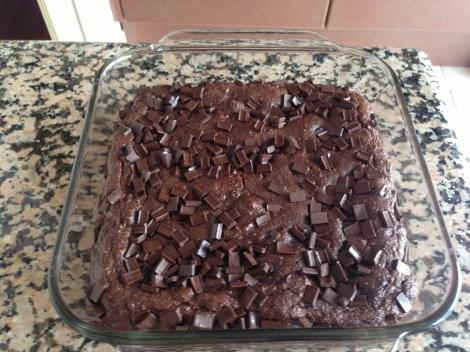 """Paleo-ish"" chocolate squares."